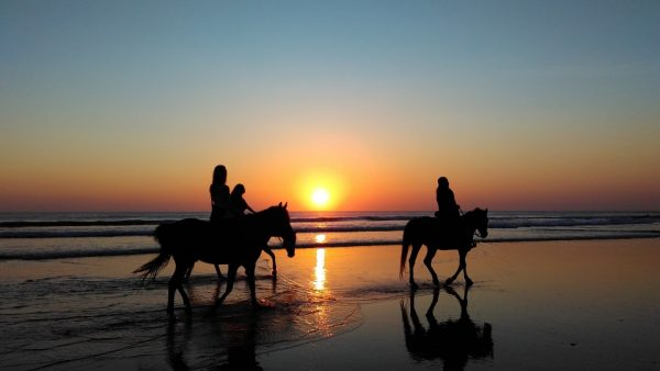 Riding horses at sunset on beach in the summer on Amelia Island