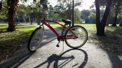 Amelia Island and the area surrounding is the perfect destination for a family-friendly biking vacation. Filled with beautiful sights, sounds, food, and many biking and hiking trails and paths, you'll love exploring this scenic island getaway on a bicycle.