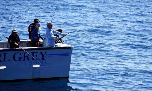 amelia island boat tour