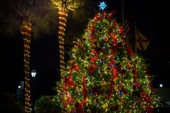 Attend Dickens on Centre for Christmas celebrations || Amelia Island || Amelia Vacations