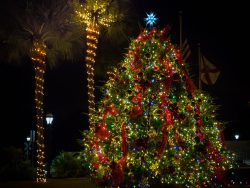 Christmas tree lit up || Attend Dickens on Centre for Christmas celebrations || Amelia Island || Amelia Vacations