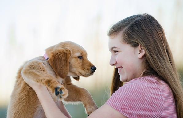 Dog Friendly   Amelia Vacation Rentals
