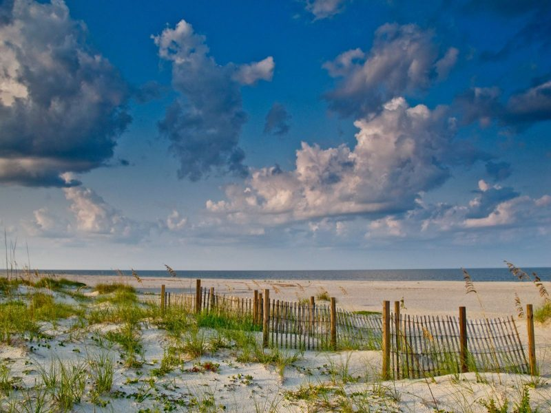 The Amelia Island Wellness Festival is an annual three-day festival typically held the 2nd weekend in November that is dedicated to holistic health and wellness.