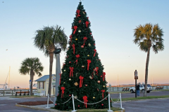 Fernandina Beach Christmas Tree || Amelia Vacations